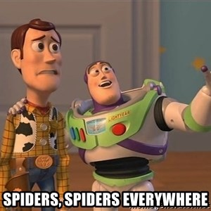 Anonymous, Anonymous Everywhere -  Spiders, spiders everywhere