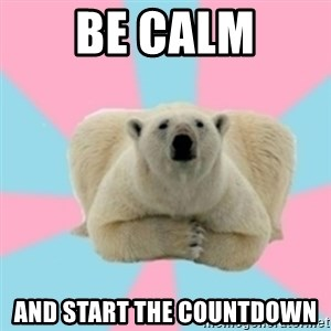 Perfection Polar Bear - be calm and start the countdown