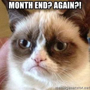 Angry Cat Meme - Month end? again?!
