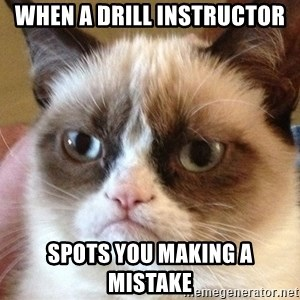 Angry Cat Meme - when a drill instructor spots you making a mistake