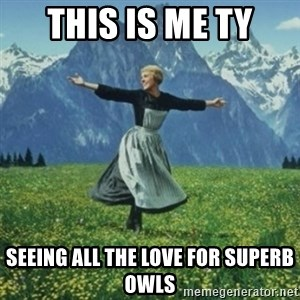 sound of music - THIS IS ME ty SEEING ALL THE LOVE FOR SUPERB OWLS