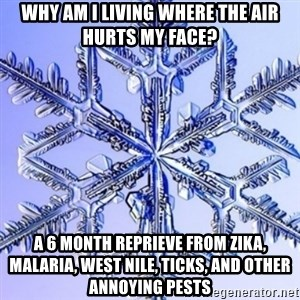 Special Snowflake meme - Why am I living where the air hurts my face? A 6 month reprieve from Zika, Malaria, West Nile, Ticks, and other annoying pests
