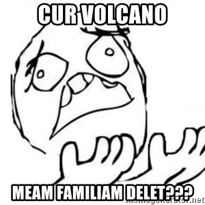 WHY SUFFERING GUY - cur volcano meam familiam delet???