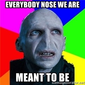 Poor Planning Voldemort - Everybody nose we are meant to be