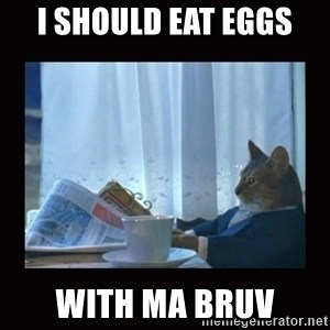 i should buy a boat cat - I should eat eggs with ma bruv