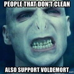 Angry Voldemort - People that don't clean also support voldemort