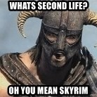 Skyrim Meme Generator - Whats Second Life? Oh you mean skyrim