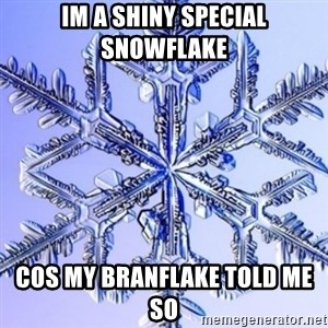 Special Snowflake meme - Im a shiny special snowflake  Cos my branflake told me so
