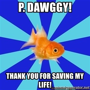 Absentminded Goldfish - p. dawggy! thank you for saving my life!