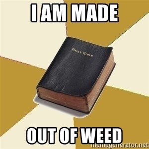 Denial Bible - I am made out of weed