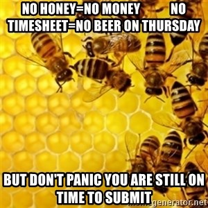 Honeybees - No honey=No money            no timesheet=no beer on Thursday But don't panic you are still on time to submit