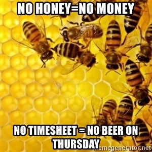 Honeybees - No Honey=no money No timesheet = no beer on Thursday