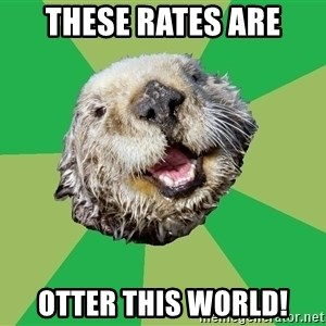 Ocd Otter - these rates are otter this world!