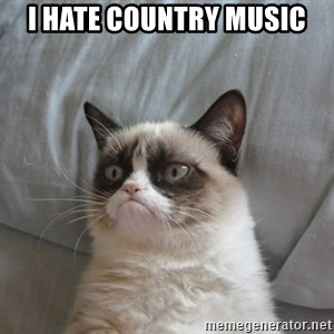 Grumpy cat good - I hate country music