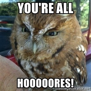 Overly Angry Owl - You're All HOOOOORES!