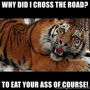 Sarcasm Tiger - Why Did I Cross The Road? To eat your ass of course!