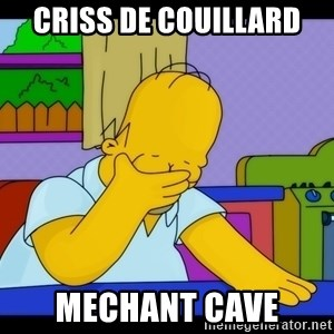 Homer Facepalm - Criss de couillard Mechant cave