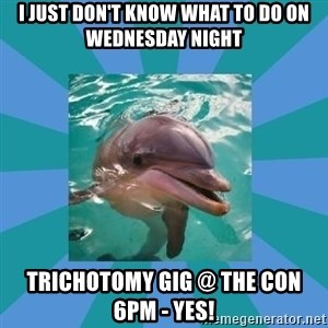 Dyscalculic Dolphin - I just don't know what to do on Wednesday night Trichotomy gig @ The Con 6pm - YES!