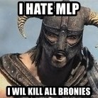 Skyrim Meme Generator - i hate mlp i wil kill all bronies