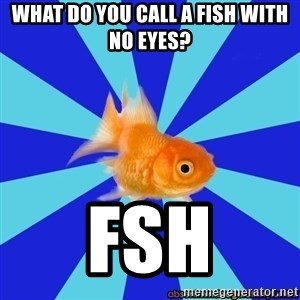 Absentminded Goldfish - What do you call a fish with no eyes? fsh