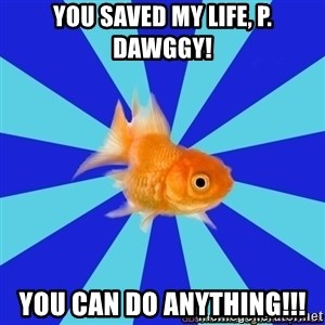 Absentminded Goldfish - you saved my life, p. dawggy! you can do anything!!!