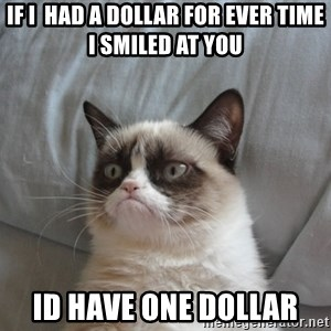 Grumpy cat good - if i  had a dollar for ever time i smiled at you id have one dollar