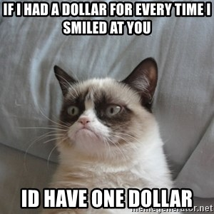 Grumpy cat good - if i had a dollar for every time i smiled at you id have one dollar