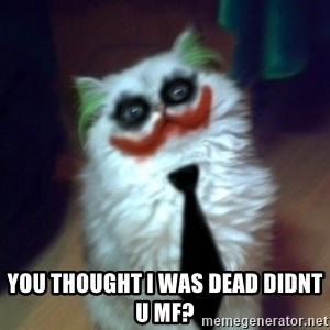 JokerCat -  you thought I was dead didnt u MF?