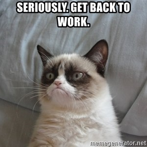 Grumpy cat good - Seriously. Get back to work.