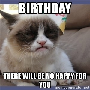 Birthday Grumpy Cat - Birthday  there will be no happy for you