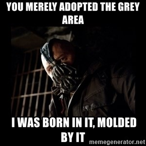 Bane Meme - You merely adopted the grey area  I was born in it, molded by it