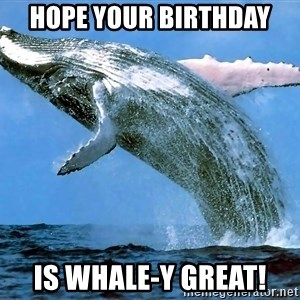 whaleeee - Hope your Birthday  is Whale-y Great!