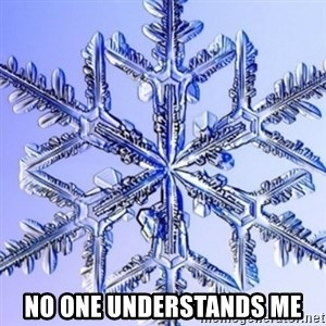 Special Snowflake meme -  no one understands me