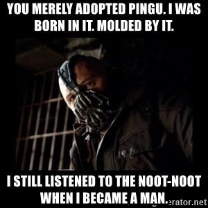 Bane Meme - YOU MERELY ADOPTED PINGU. I WAS BORN IN IT. MOLDED BY IT.  I STILL LISTENED TO THE NOOT-NOOT WHEN I BECAME A MAN.