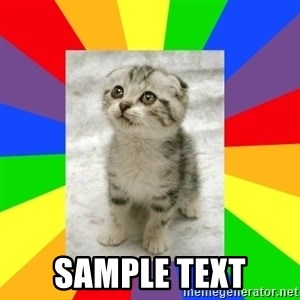 Cute Kitten -  SAMPLE TEXT
