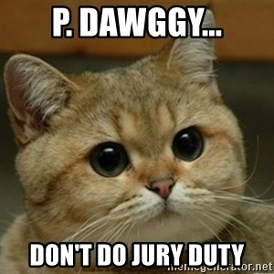 Do you think this is a motherfucking game? - p. dawggy... don't do jury duty