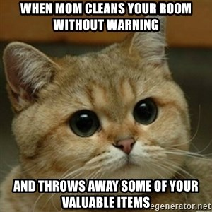 Do you think this is a motherfucking game? - When mom cleans your room without warning and throws away some of your valuable items