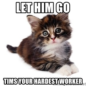fyeahpussycats - let him go  tims your hardest worker