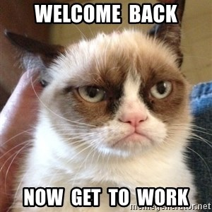 Grumpy Cat 2 - Welcome  back now  get  to  work
