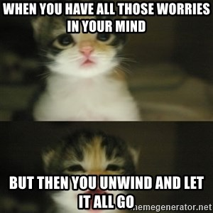 Adorable Kitten - When you have all those worries in your mind But then you unwind and let it all go