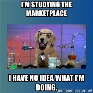 Chemistry Dog - I'm studying the Marketplace I have no idea what I'm doing.
