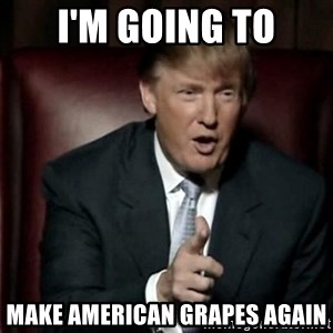 Donald Trump - I'm going to make american grapes again