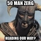 Skyrim Meme Generator - 50 man zerg heading our way?