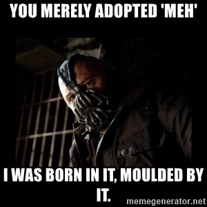 Bane Meme - You merely adopted 'meh' I was born in it, moulded by it.