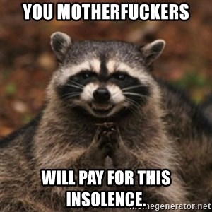 evil raccoon - you motherfuckers will pay for this insolence.