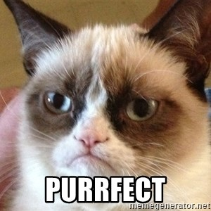 Angry Cat Meme -  Purrfect