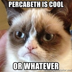Angry Cat Meme - percabeth is cool Or whatever