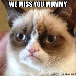 Angry Cat Meme - we miss you mummy