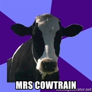 Coworker Cow -  Mrs cowtrain