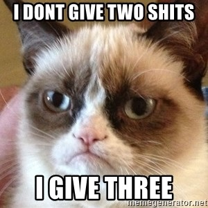 Angry Cat Meme - I DONT GIVE TWO SHITS I GIVE THREE